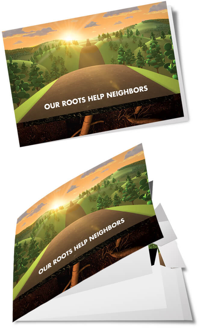 Boone County Bank Roots Campaign printed booklet